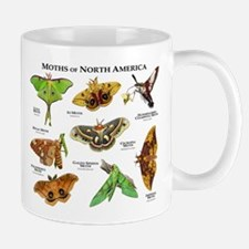 Moths of North America Mug