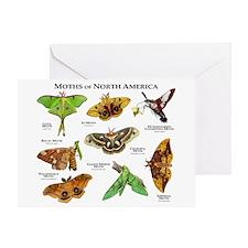 Moths of North America Greeting Card