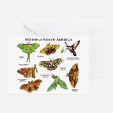 Moths of North America Greeting Card