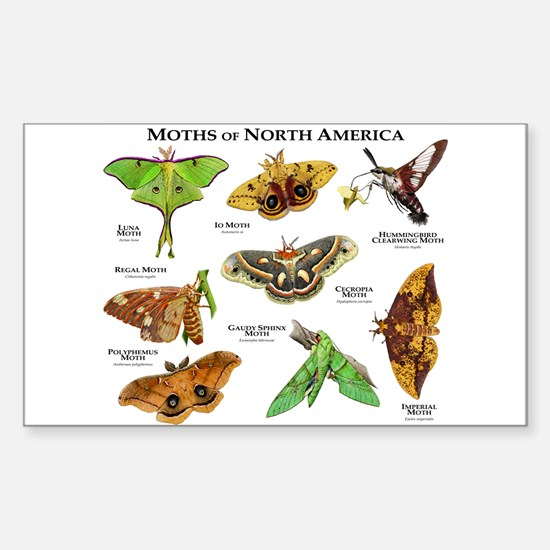 Moths of North America Sticker (Rectangle)