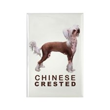 Chinese Crested Rectangle Magnet