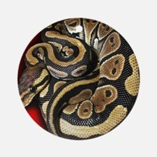 Ball Python Round Ornament