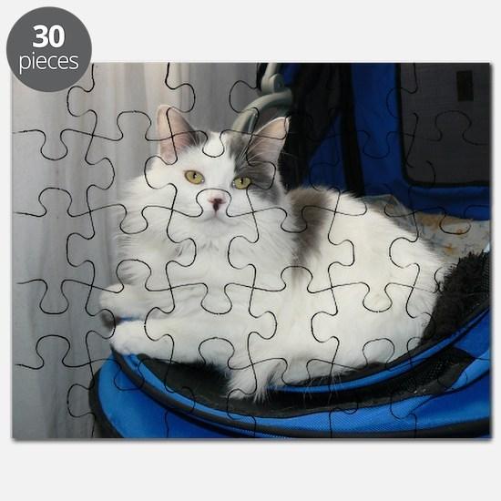 fiona 4 Puzzle