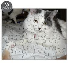 fiona 3 Puzzle