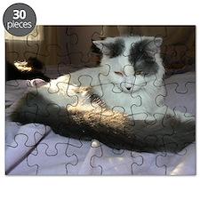 fiona 2 Puzzle