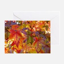 Autumn Leaves 97M Fall Tree Leaves Greeting Cards