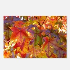 Autumn Leaves 97M Colorful Fall Leaves Postcards