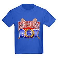 Baseball 6th Birthday T