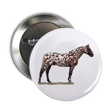 """Knabstrup 2"" 2.25"" Button (100 pack)"