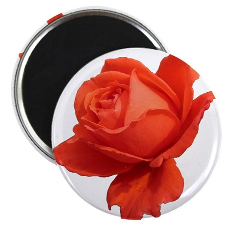 """Rose 1"" 2.25"" Magnet (100 pack)"