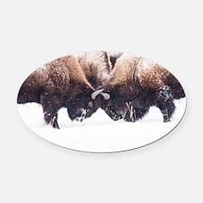 Buffaloes Oval Car Magnet