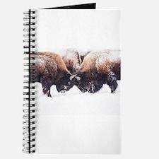 Buffaloes Journal