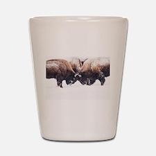 Buffaloes Shot Glass