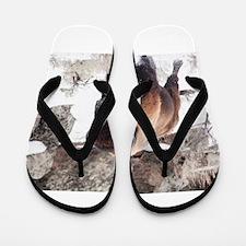 Buffalo Flip Flops