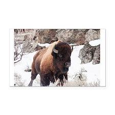 Buffalo Rectangle Car Magnet