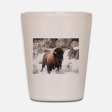 Buffalo Shot Glass