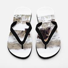 Bison Flip Flops