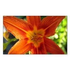 """""""Lily 1"""" Rectangle Decal"""