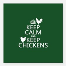 """Keep Calm and Keep Chickens Square Car Magnet 3"""" x"""