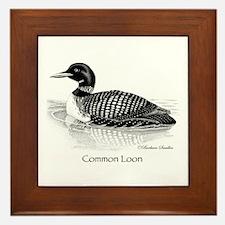 Common Loon Framed Tile