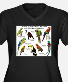 Tropical Birds of Central and South America Women'