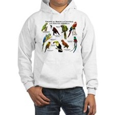 Tropical Birds of Central and South America Hoodie