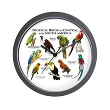 Tropical Birds of Central and South America Wall C