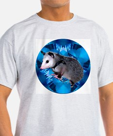 Baby Possum Kaleidoscope Ash Grey T-Shirt