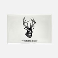 White Tailed Deer 10 Point Buck Magnets