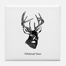 White Tailed Deer 10 Point Buck Tile Coaster