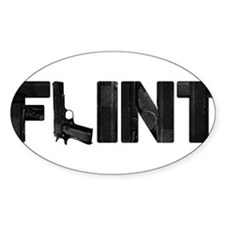 Flint Gun Michigan Texas Decal