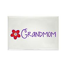 My Fun Grandmom Magnets