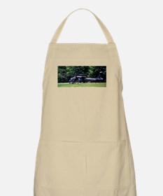 Squad Out BBQ Apron