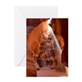 Antelope Greeting Cards
