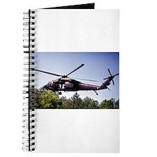 Treetop Flight Journal