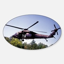 Treetop Flight Oval Decal