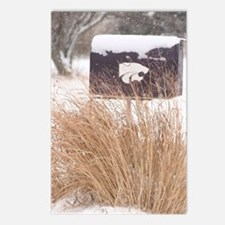 Winter Mailbox Postcards (Package of 8)