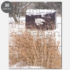 Winter Mailbox Puzzle