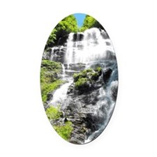 Amicalola Falls in North Georgia Oval Car Magnet
