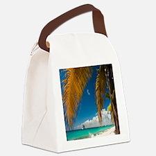 Palm trees cruise Catalina Island - Copy (2) Canva