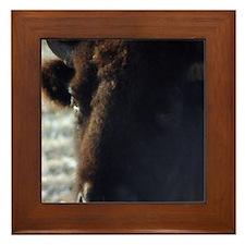 Buffalo Framed Tile A closer look.