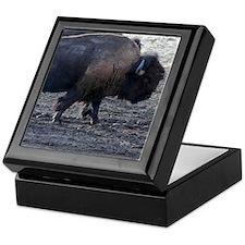Buffalo Keepsake Box bull On The March