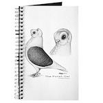 Polish Owl Journal