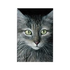 Cat 478 Rectangle Magnet