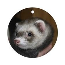 Zac #4 Round Ornament