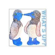 whats up blue footed boobie Sticker