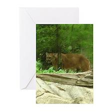 puma Greeting Cards (Pk of 10)