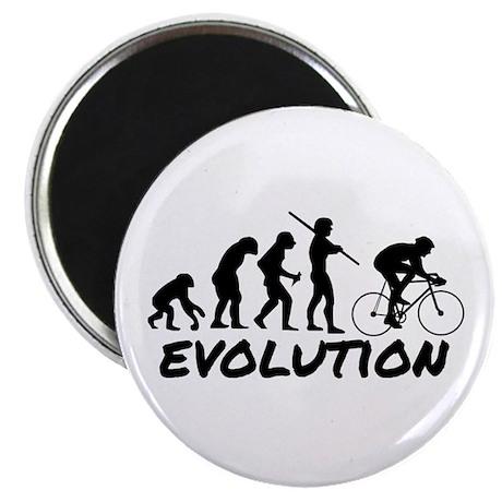 Bicycle Evolution Magnet