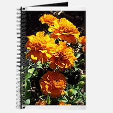 Autumn Marigolds Journal