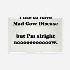 Cute Mad cow Rectangle Magnet